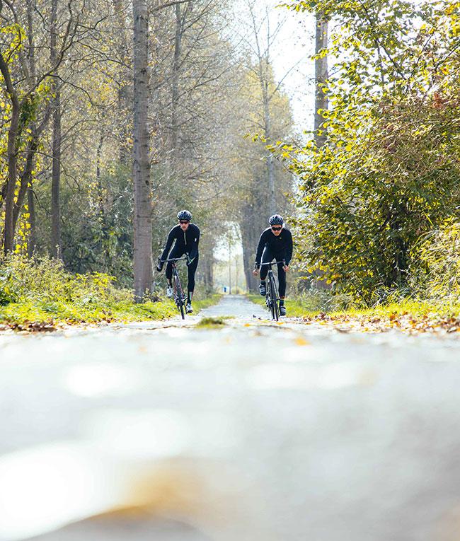 MTB - Prorace fietsen - bikes2019